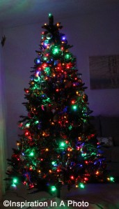 Christmas Tree 2014_anniversary post
