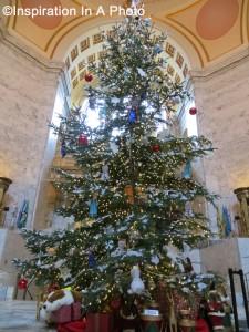 Capitol Christmas tree 2014