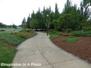 Manicured_meandering path