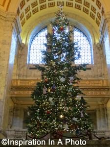 Capitol Christmas tree_2015