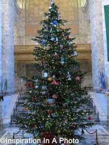 Capitol Christmas tree 2016