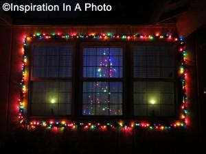 Lit window with tree_night